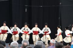 Evropska smotra folklora, Wien, 15.05.2016