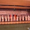 6. Europäische Festival der serbischen Folklore, Deutschland, 13.02.2016